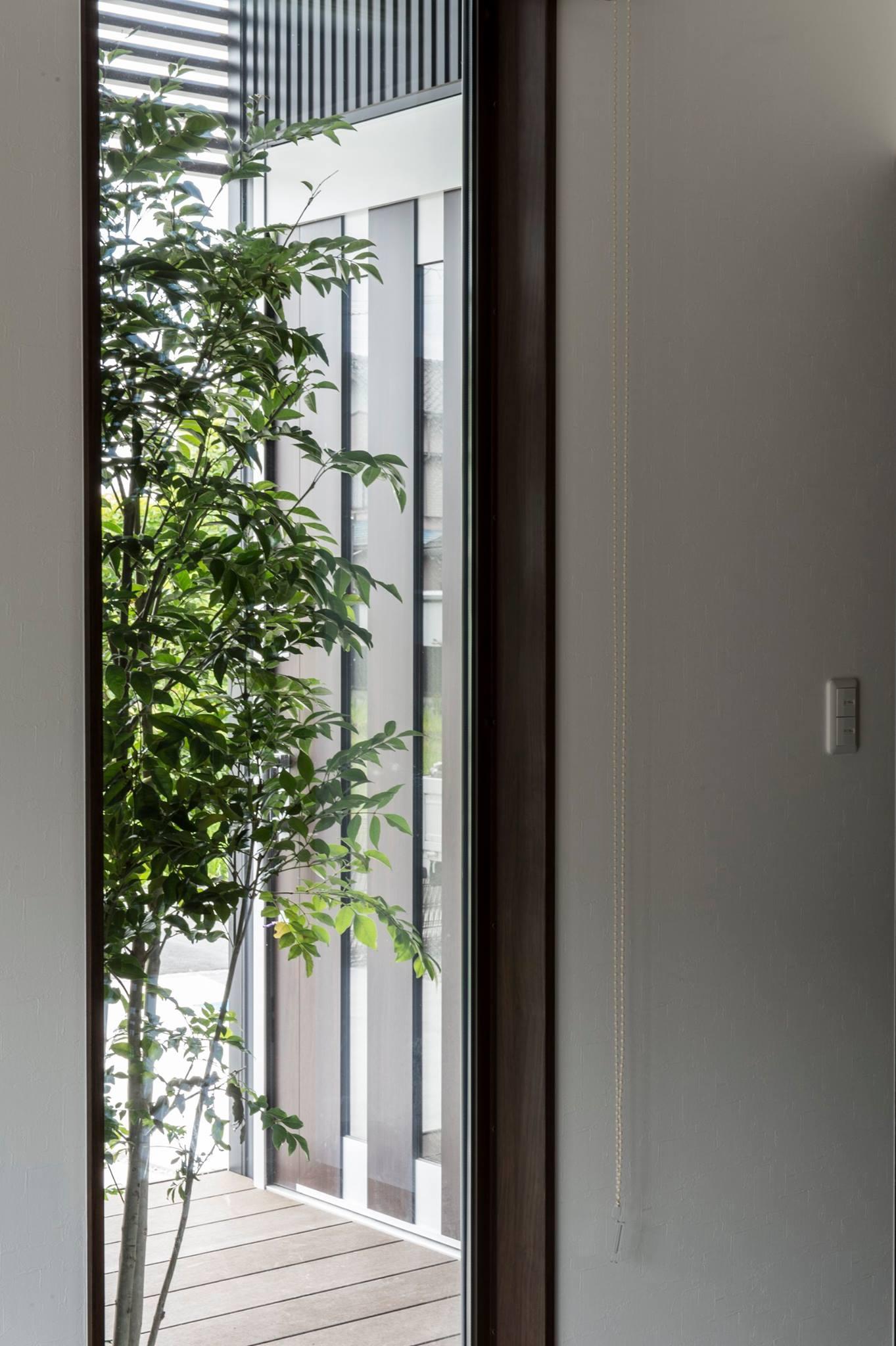 坪庭の緑を感じる家